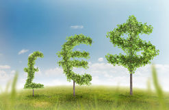Money trees. Financial growth and success on a green summer natural green grass landscape with a single trees in the shape of a money sign showing a business Royalty Free Stock Image