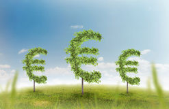 Money trees. Financial growth and success on a green summer natural green grass landscape with a single trees in the shape of a money sign showing a business Stock Photos