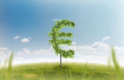 Money trees. Financial growth and success on a green summer natural green grass landscape with a single trees in the shape of a money sign showing a business Stock Image