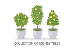 Money trees set. Trees in pot with green and golden leaves Royalty Free Stock Image