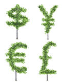 Money trees Royalty Free Stock Images