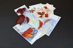 Money under leaves on black background Stock Photo