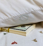 Money Under Pillow Royalty Free Stock Photos