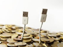 Money and usb trees Royalty Free Stock Photography