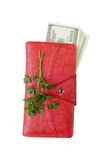 Money wallet. Some dollar in red wallet Stock Images