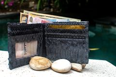 Money, credit cards in wallet. Full open purse. Python piton snake fashionable handbag, clutch.Python accessories.Fashionable royalty free stock photo