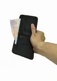 Money in Wallet in hand Royalty Free Stock Image
