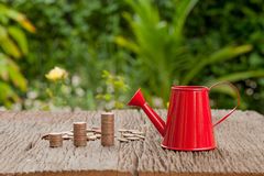 Money and watering can, Saving money concept, financial savings Stock Photography