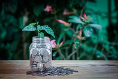 Money is what makes royalty free stock images