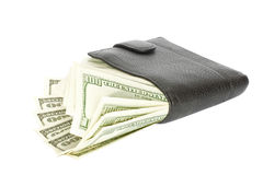 Money With Wallet Royalty Free Stock Images