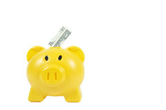 Money in yellow piggy-bank, business concept.  Royalty Free Stock Photo