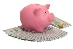 Moneybox świni stojaki na fan dolary i paczka z monetą obrazy stock