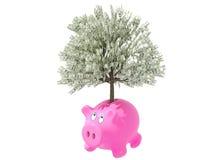 moneybox Arkivfoton
