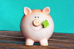 葡萄酒猪moneybox 免版税库存照片