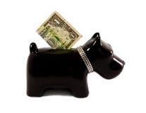 Moneybox del pequeño perro foto de archivo libre de regalías