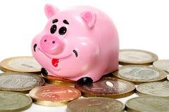Moneybox e dinheiro cor-de-rosa do porco Fotografia de Stock