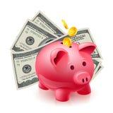 Moneybox - pig och dollar Royaltyfri Foto