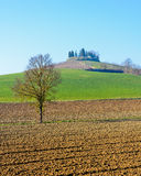 Monferrato横向 在山麓,意大利的秋天 免版税库存照片
