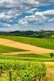 Monferrato Ιταλία, αγροτικό τοπίο στοκ εικόνες