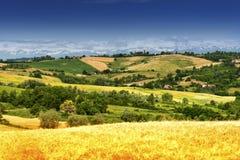Monferrato (Ιταλία): τοπίο Στοκ Εικόνες