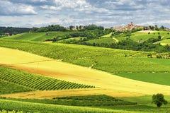Monferrato (Ιταλία): τοπίο Στοκ φωτογραφία με δικαίωμα ελεύθερης χρήσης