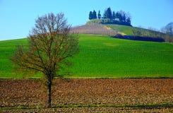 Monferrato hdr krajobraz Jesień w Podgórskim, Włochy Zdjęcia Stock