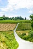 Monferrato (Italie) Photos stock