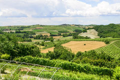 Monferrato (Italy) Stock Photography