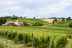 Monferrato (Italy) Stock Photos