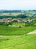 Monferrato (Italy) Royalty Free Stock Image