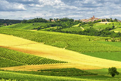 Monferrato (Italy): landscape Royalty Free Stock Photography