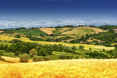 Monferrato (Itália): paisagem Foto de Stock