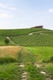 Monferrato (Piemonte): landschap Royalty-vrije Stock Afbeelding