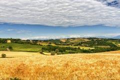 Monferrato (Włochy): krajobraz Obrazy Royalty Free