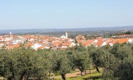 Monforte da Beira by, Castelo Branco, Portugal Royaltyfri Fotografi