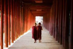 Monge budista nova que anda e que lê Imagem de Stock Royalty Free