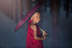Monge budista pequena Foto de Stock Royalty Free