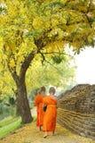 A monge budista que anda para recebe o alimento Imagens de Stock Royalty Free