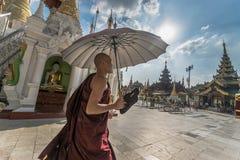 Monge de Myanmar Fotos de Stock