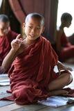 Monge do principiante, Myanmar Imagem de Stock