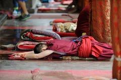 Monge nova que praying Foto de Stock