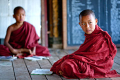 Monges do principiante, Myanmar Foto de Stock