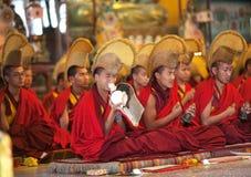 Monges e lamas budistas durante a cerimónia do puja Imagens de Stock Royalty Free