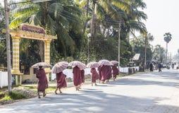 Monges em uma linha imagens de stock