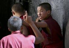 Monges novas não identificadas Fotos de Stock Royalty Free