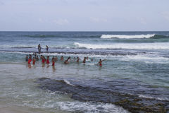 Monges que nadam no Oceano Índico Fotografia de Stock