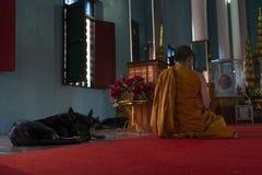 Monges que rezam em um templo budista foto de stock