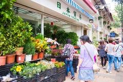 Mongkok Hong Kong, Wrzesień, - 24, 2016: Kwiat i drzewo dla sa Zdjęcie Royalty Free