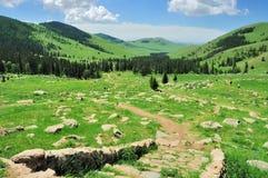 Mongoła krajobraz Obraz Royalty Free
