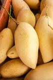 Mongo. Mango Ready to Eat at outdoor farmers market in Thailand Royalty Free Stock Images